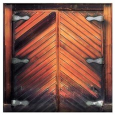 Old Wooden Door Poster