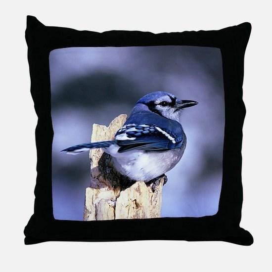 Cute Blue jay Throw Pillow