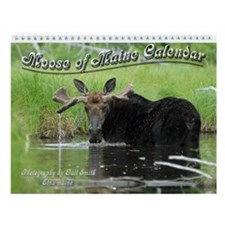 Moose of Maine Wall Calendar