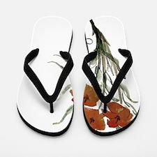 Cute Congratulations Flip Flops