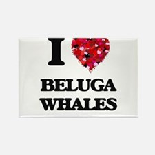 I love Beluga Whales Magnets