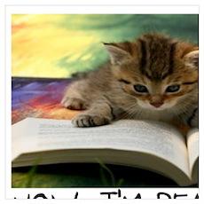 CAT - TO KILL A MOCKINGBIRD Poster