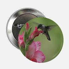 "Hummingbird In Gladiolas 2.25"" Button (10 Pac"