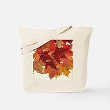 Fall Sugar Maple Leaves Tote Bag
