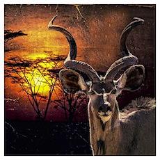 Antelope Sunset Poster