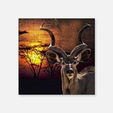 "Antelope Sunset Square Sticker 3"" x 3"""