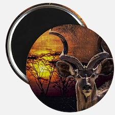 Antelope Sunset Magnet