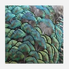 Wispy Green Peacock Feathers Tile Coaster