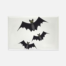 Vampire Bats Magnets
