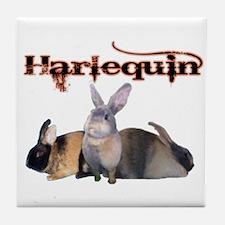 The Harlequin Tile Coaster