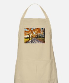 Autumn Road Apron