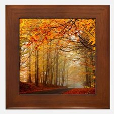 Road At Autumn Framed Tile