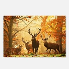 Deer In Autumn Forest Postcards (Package of 8)