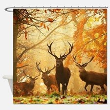 Deer In Autumn Forest Shower Curtain