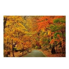 Park At Autumn Postcards (Package of 8)