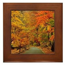 Park At Autumn Framed Tile