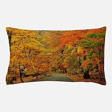 Park At Autumn Pillow Case
