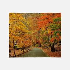 Park At Autumn Throw Blanket