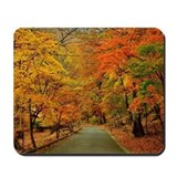 Autumn leaves Classic Mousepad