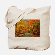 Park At Autumn Tote Bag
