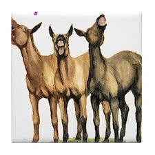 Mules, laugh till it hurts Tile Coaster