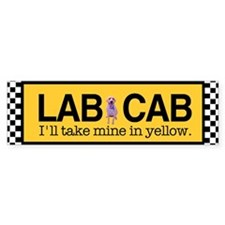 Yellow Lab Bumper Car Sticker
