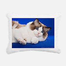 Cute Cats ragdoll Rectangular Canvas Pillow