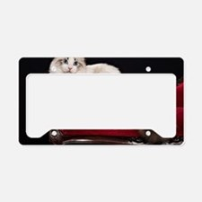 Cute Ragdoll License Plate Holder