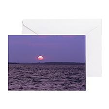 Cute Amelia island Greeting Card