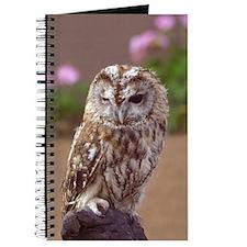 Winking Owl Journal