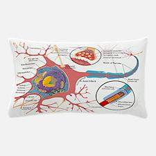 Neuron Cell Diagram Pillow Case