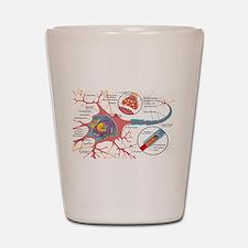 Neuron Cell Diagram Shot Glass