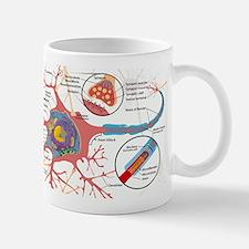 Neuron Cell Diagram Mugs