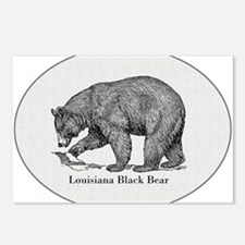 Louisiana Black Bear Postcards (Package of 8)