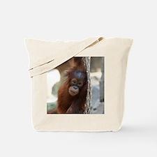 OrangUtan20151004 Tote Bag
