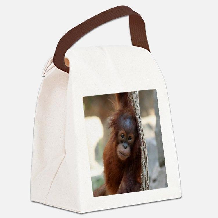 OrangUtan20151004 Canvas Lunch Bag