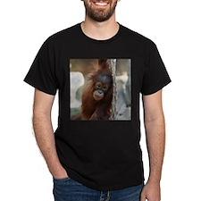 OrangUtan20151004 T-Shirt