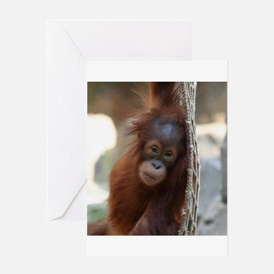 OrangUtan20151004 Greeting Cards