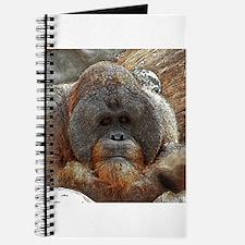 OrangUtan20151005 Journal