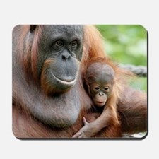 OrangUtan20151006 Mousepad
