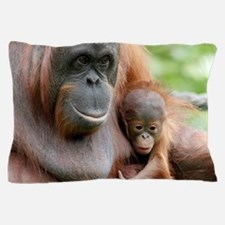 OrangUtan20151006 Pillow Case