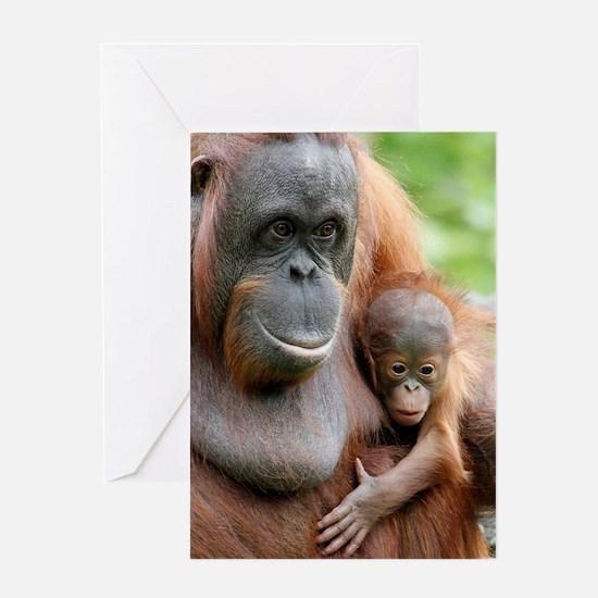 OrangUtan20151006 Greeting Cards