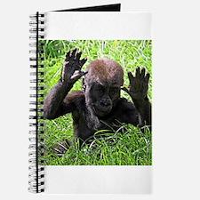 Gorilla20151001 Journal