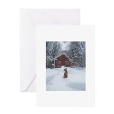 Cool Airedales Greeting Card