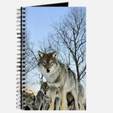 Pack Of Wolves During Winter Journal