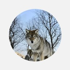 Pack Of Wolves During Winter Button