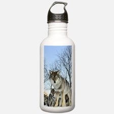 Pack Of Wolves During Winter Sports Water Bottle