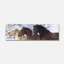 Horses Running In The Snow Car Magnet 10 x 3