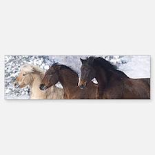 Horses Running In The Snow Bumper Bumper Bumper Sticker