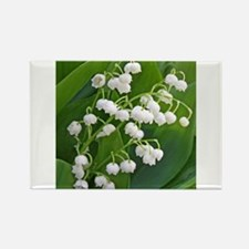 Cute Lily of the valley Rectangle Magnet